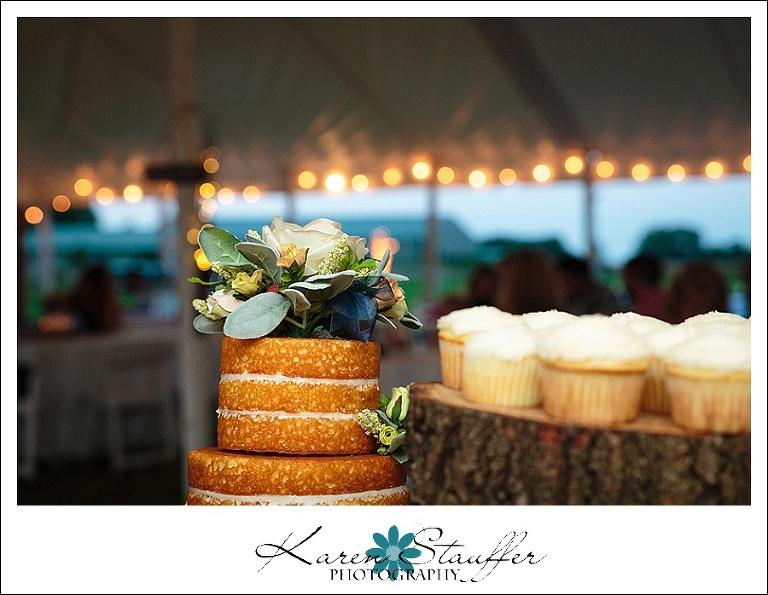 Wedding Cake & Cupcakes